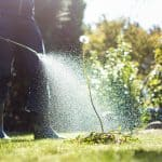 How long does it take for weed killer to work