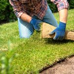 Tips for how to get rid of weeds before laying sod