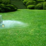 What does lime do for lawns?