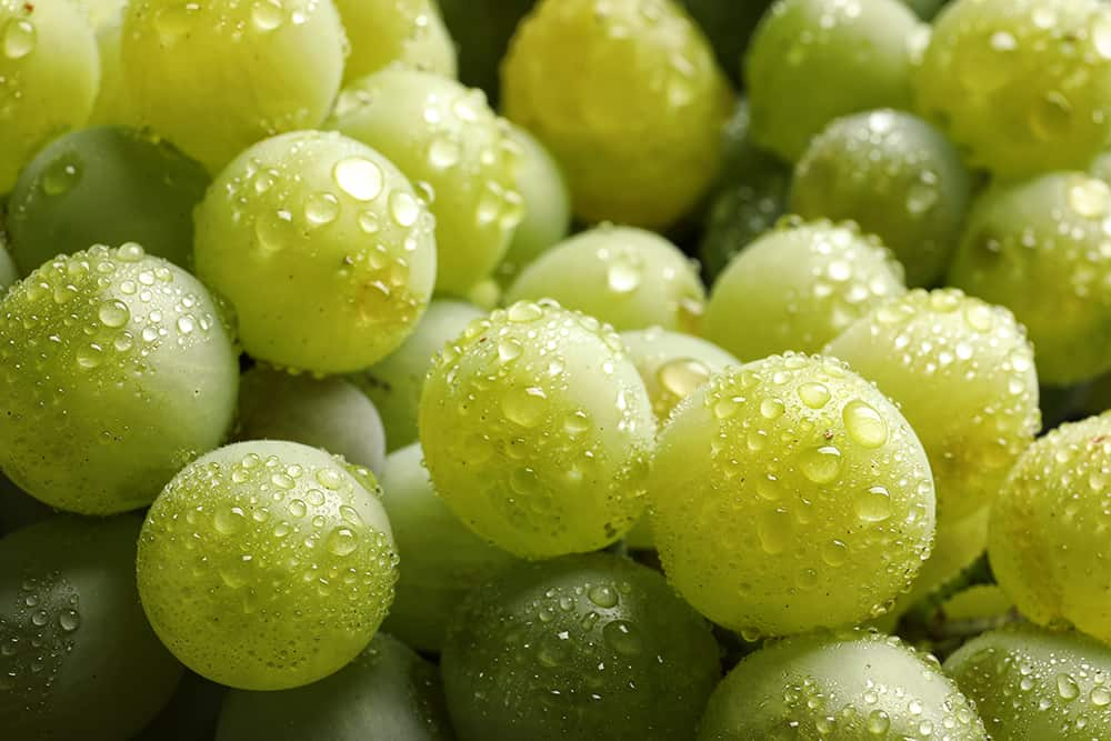 How much water do grapes need?