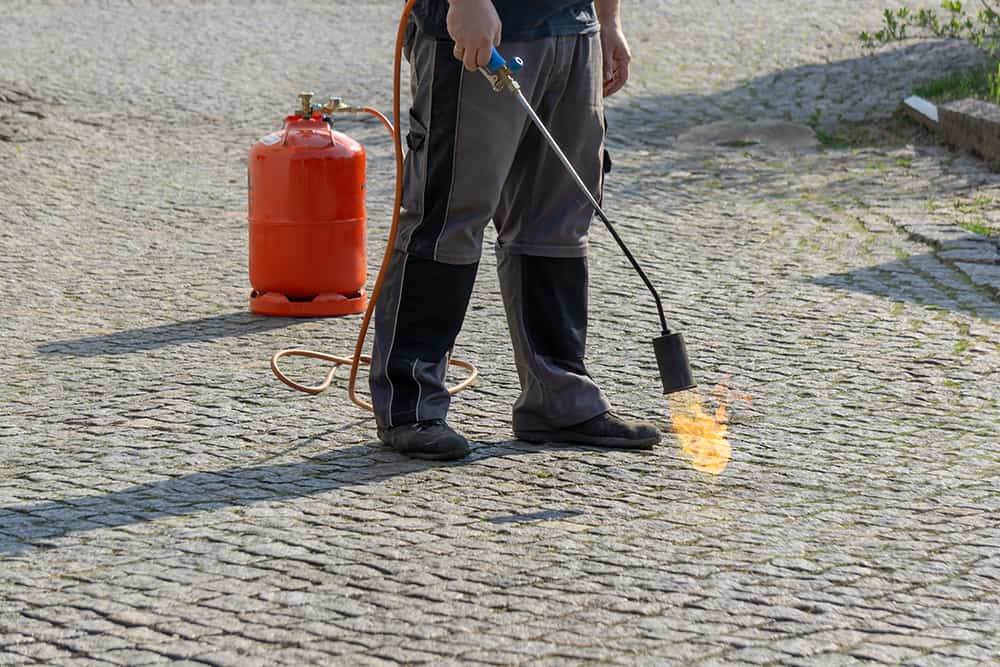 Man using a flame weeder to kill weeds in the concrete and sidewalk
