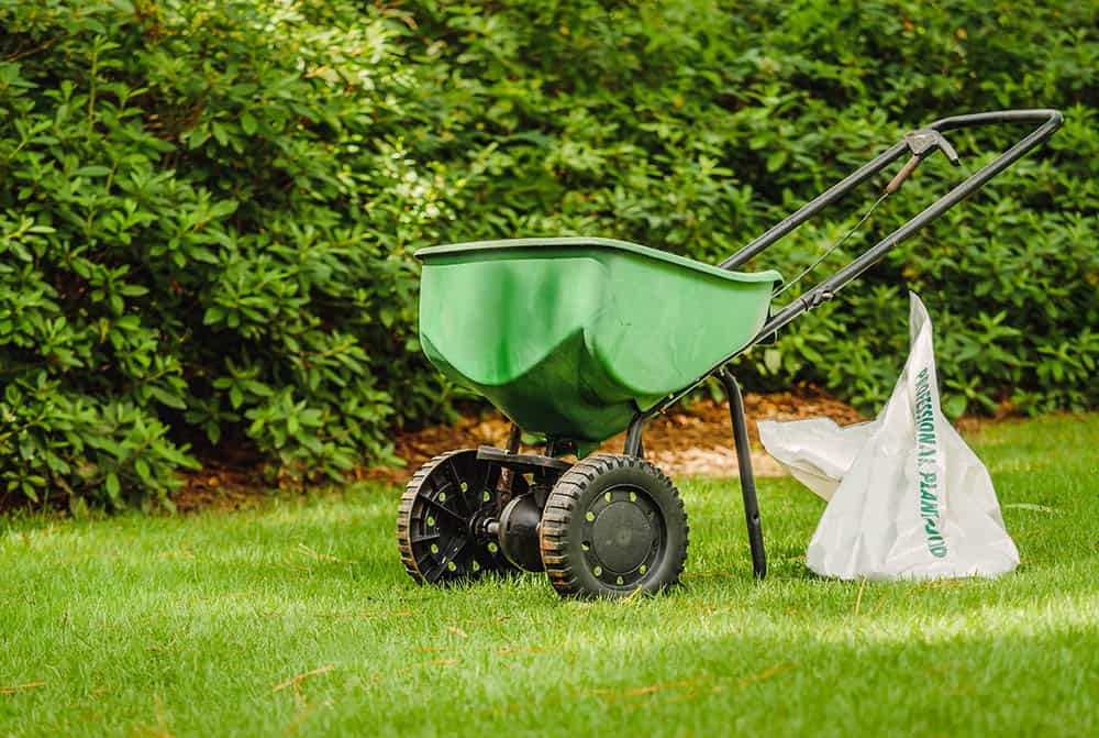 Using 15-0-15 fertilizer on Bermuda, Zoysia, St. Augustine, and Centipede grass