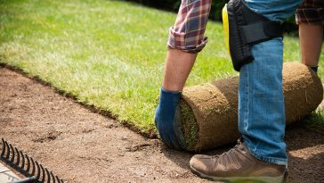 How to lay sod in Texas