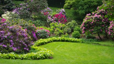 Weed killer safe for trees and shrubs