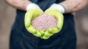19-19-19 fertilizer for lawns