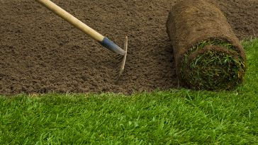 How to prepare soil before laying sod