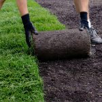 How to lay sod without tilling