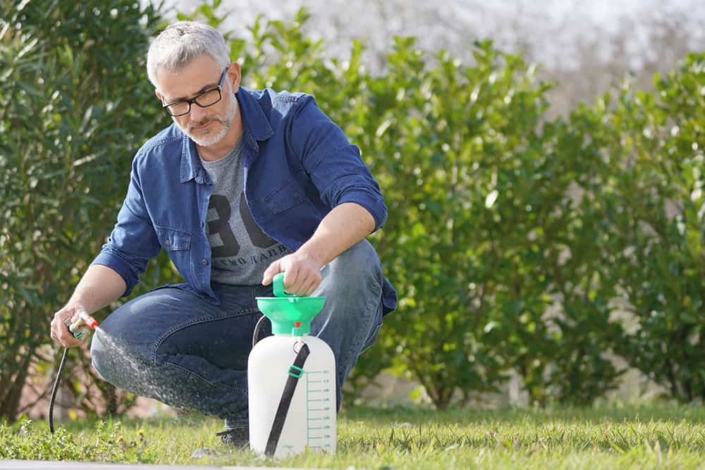When to apply humic acid