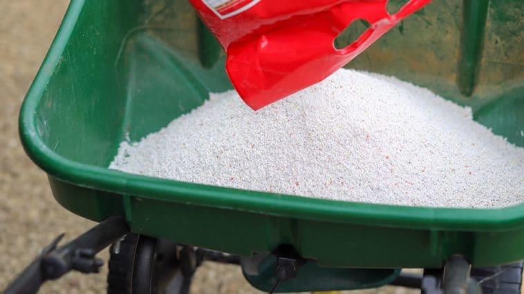 Best fertilizer for Kentucky Bluegrass