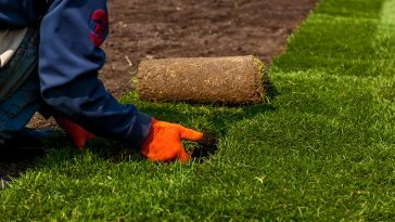 Compost vs topsoil for sod