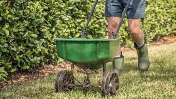Milorganite before or after mowing?