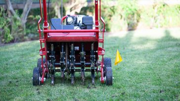 Best time to aerate lawn in northeast