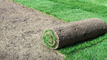 Can you lay sod in the winter?