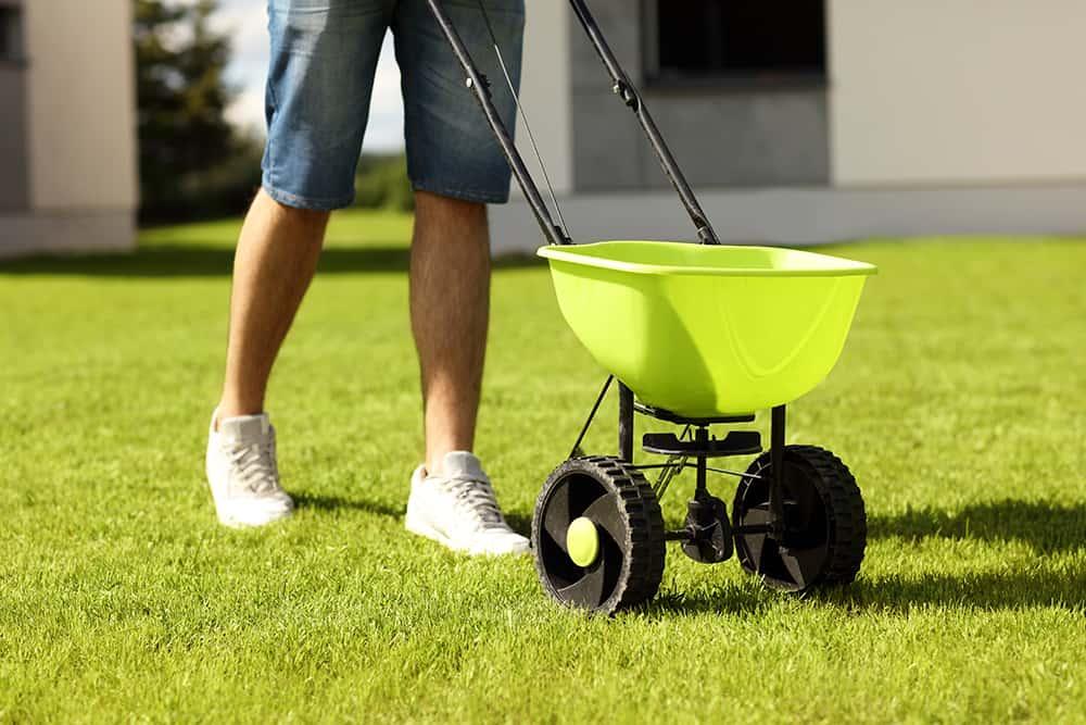 Does fertilizer kill weeds?