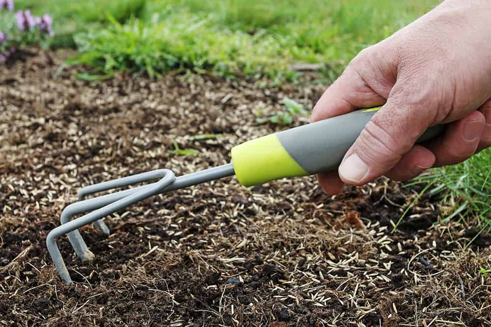 How deep to plant grass seed