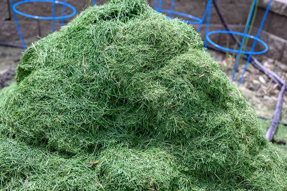 Will grass clippings kill weeds?