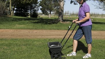 Peat moss for overseeding lawn