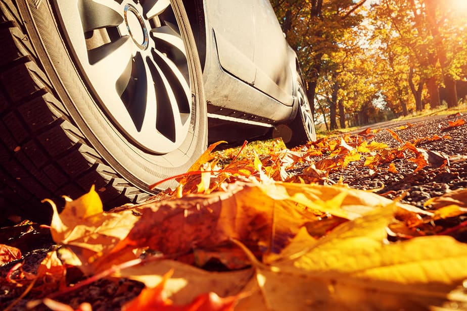 Drive over leaves to shred and mulch them without a mower.