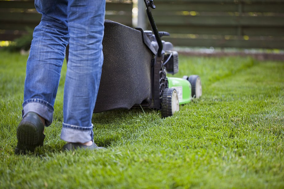 How soon can you mow after spreading Scotts Weed and Feed?
