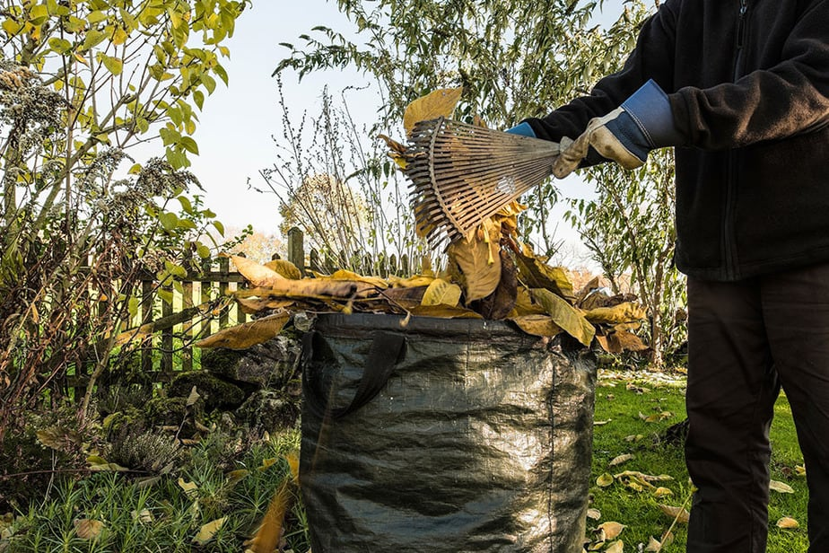 How to rake leaves into a bag