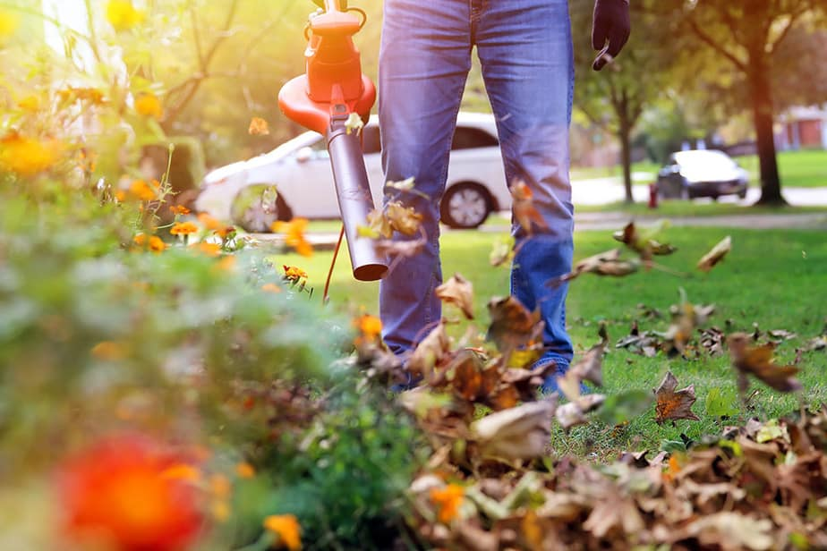 Use a leaf blower to remove leaves from rocks
