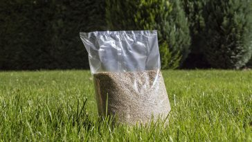 Peat moss or straw for grass seed